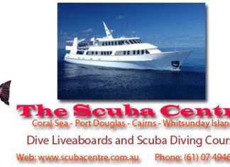 people diving with the scuba centre in the whitsundays