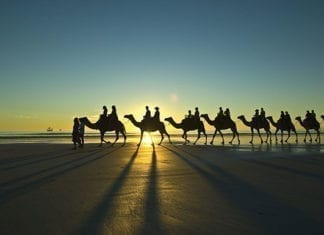 camel ride cable beach Broome