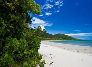 Cape Tribulation Norther Queensland