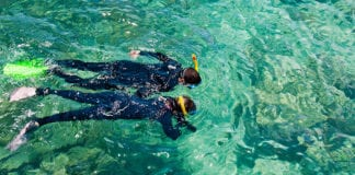 Destination Guide Great Barrier Reef snorkelling tour
