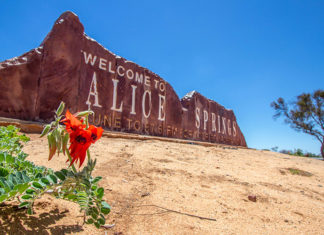 Cairns to Alice Springs Tours by Bus