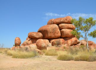 Bus tours from Darwin to Alice Springs