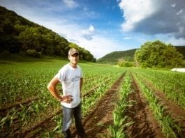 How to find Farm jobs in Victoria and when on a working holiday visa