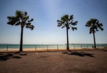 Things to do in Darwin Northern Territory today