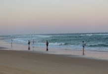 Hervey Bay and Fraser Island Tours