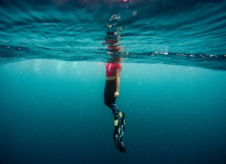 Best Beaches for Snorkelling in Melbourne Australia