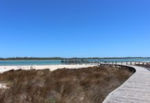 Day Trip from Perth to Lake Clifton