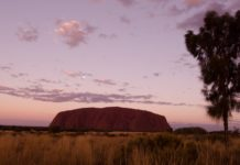 Sightseeing from Alice Springs to Uluru
