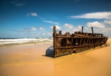 One Day Tours to Fraser Island for Backpackers