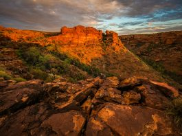 Kings Canyon Tours (Watarrka)