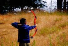 An Introduction To Compound Bows And How To Use It